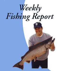 Sandpiper sportfishing charters for Weekly fishing report mi